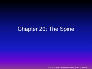 Chapter 20: The Spine