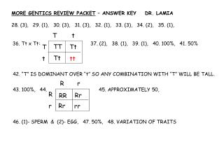 MORE GENTICS REVIEW PACKET – ANSWER KEY DR. LAMIA
