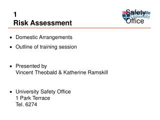 1 Risk Assessment