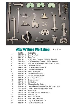 Mini IM   Knee Workshop