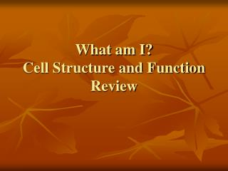 What am I? Cell Structure and Function Review