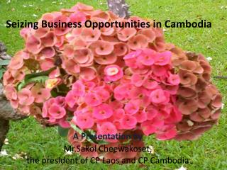 Seizing Business Opportunities in Cambodia