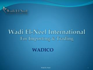 Wadi El-Neel International  F or Importing  &  Trading