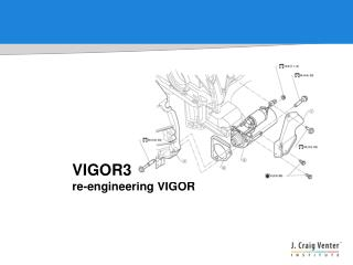 VIGOR3 re-engineering VIGOR