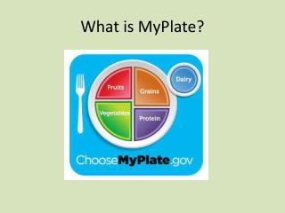 What is  MyPlate ?