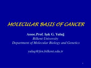 Cellular Basis of Cancer
