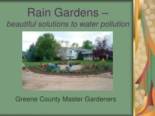 Rain Gardens –  beautiful solutions to water pollution