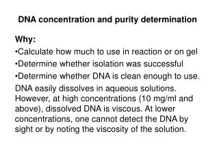 DNA concentration and purity determination