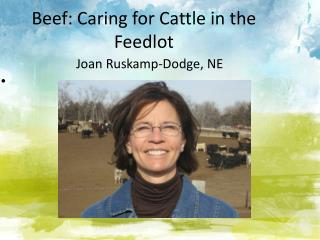Beef: Caring for Cattle in the Feedlot
