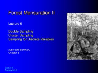 Forest Mensuration II