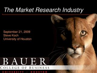 The Market Research Industry