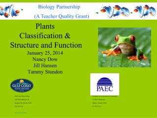 Plants  Classification &  Structure and Function January 25, 2014 Nancy Dow Jill Hansen