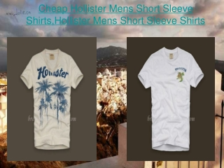 Cheap Hollister Mens Short Sleeve Shirts