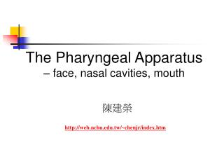 The Pharyngeal Apparatus  – face, nasal cavities, mouth