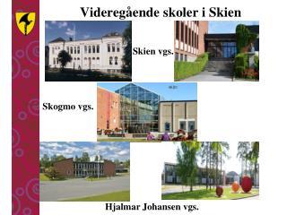 Videregående skoler i Skien