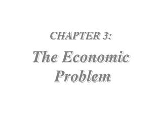 CHAPTER 3: The Economic  Problem