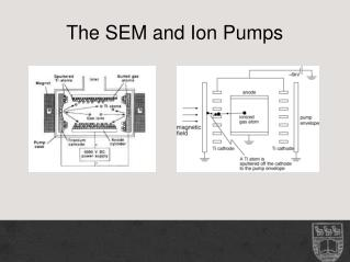 The SEM and Ion Pumps