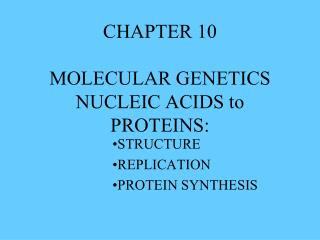 CHAPTER 10 MOLECULAR GENETICS NUCLEIC ACIDS to PROTEINS:
