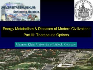 Energy Metabolism & Diseases of Modern Civilization: Part III: Therapeutic Options