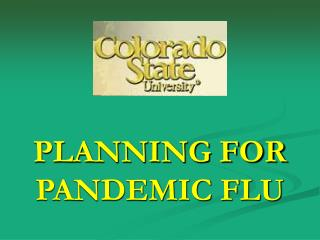 PLANNING FOR PANDEMIC FLU