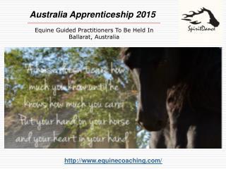 Wisdom Horse Apprenticeship in Australia