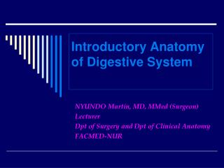 Introductory Anatomy of Digestive System
