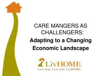 CARE MANGERS AS CHALLENGERS: Adapting to a Changing Economic Landscape