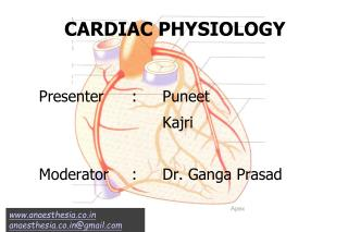 CARDIAC PHYSIOLOGY