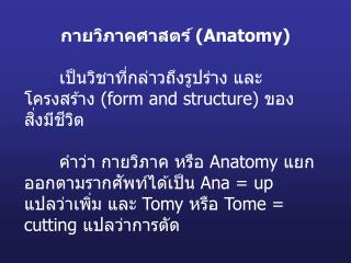 กายวิภาคศาสตร์  (Anatomy)