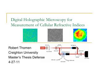 Digital Holographic Microscopy for Measurement of Cellular Refractive Indices