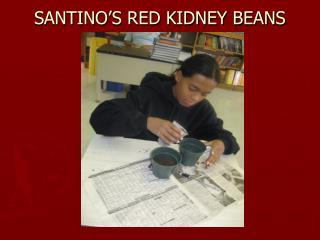 SANTINO'S RED KIDNEY BEANS