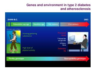 Genes and environment in type 2 diabetes and atherosclerosis