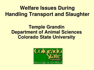 Welfare Issues During Handling Transport and Slaughter
