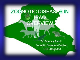 ZOO NOTIC DISEASE S IN  IRAQ OVERVIEW
