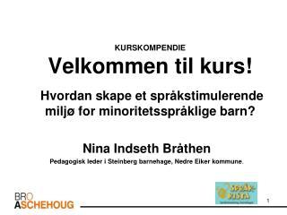 Nina Indseth Bråthen Pedagogisk leder i Steinberg barnehage, Nedre Eiker kommune .