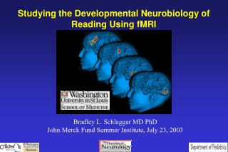Studying the Developmental Neurobiology of Reading Using fMRI
