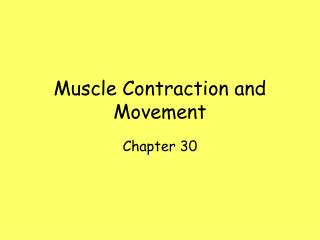 Muscle Contraction and Movement