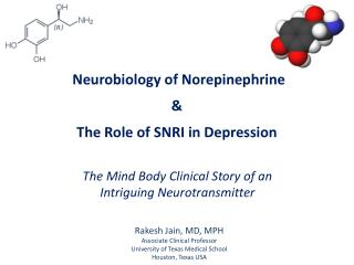 Neurobiology of Norepinephrine & The Role of SNRI in Depression