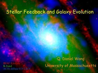 Stellar Feedback  and Galaxy Evolution