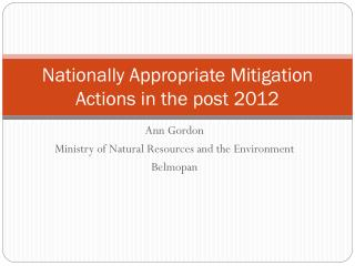 Nationally Appropriate Mitigation Actions in the post 2012