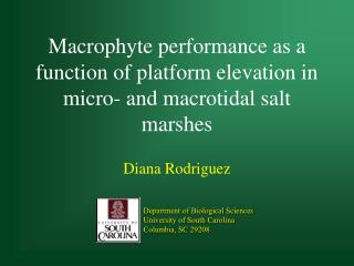 Macrophyte performance as a function of platform elevation in micro- and macrotidal salt marshes