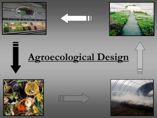 Agroecological Design