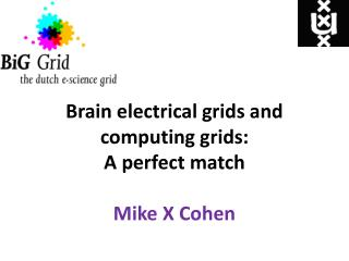 Brain electrical grids and computing grids: A perfect match Mike X Cohen