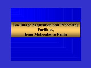Bio-Image Acquisition and Processing Facilities, from Molecules to Brain