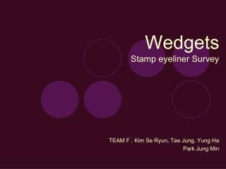 Wedgets Stamp eyeliner Survey