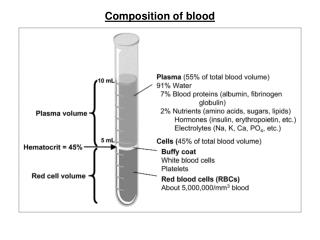 Composition of blood
