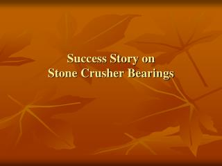 Success Story on Stone Crusher Bearings