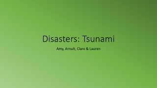 Tsunami stories from Sri Lanka, Indonesia and India