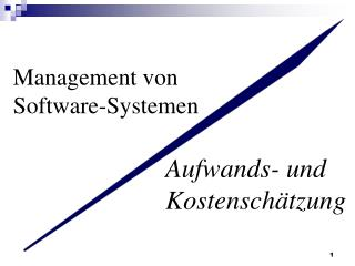 Management von Software-Systemen