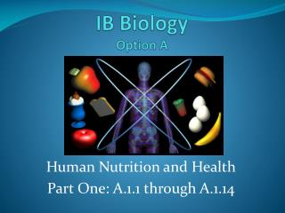 IB Biology Option A